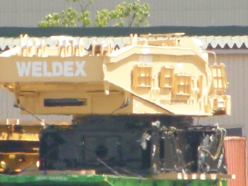 P50403462